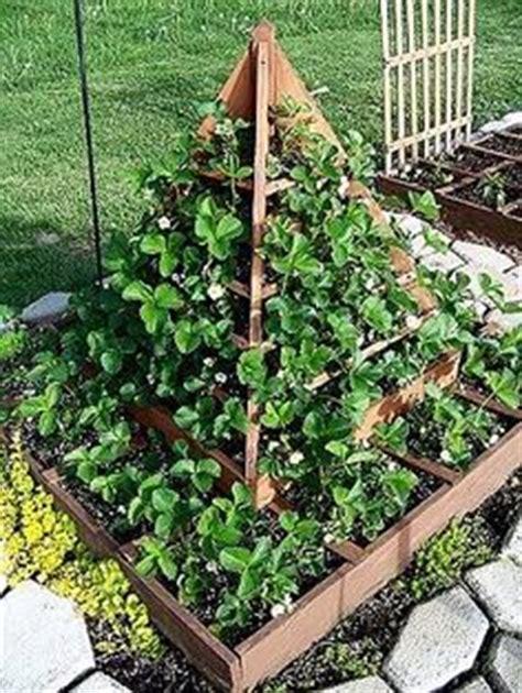 Strawberry pyramid   Pour le jardin   Pinterest   Planters