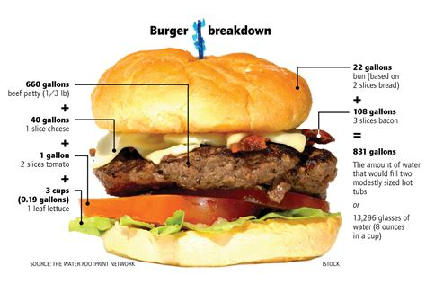 how it takes to a how much water goes into your food burger breakdown high country news