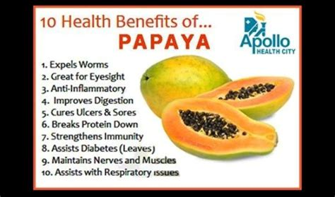 10 amazing reasons to eat papaya and what to do with the seeds proven2cure