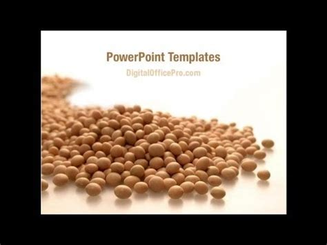soy templates soy beans powerpoint template backgrounds