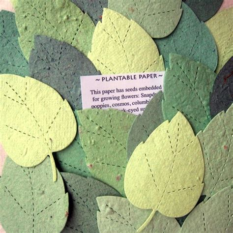 How To Make Flower Seed Paper -