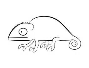 chameleon template chameleon coloring page colordad