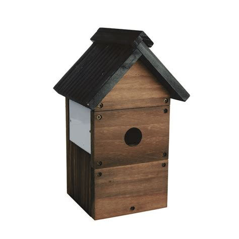 camera bird nest box kit from the range kitchen home