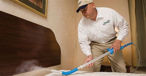 professional bed bug treatment what to do after you discover bed bugs in your hotel