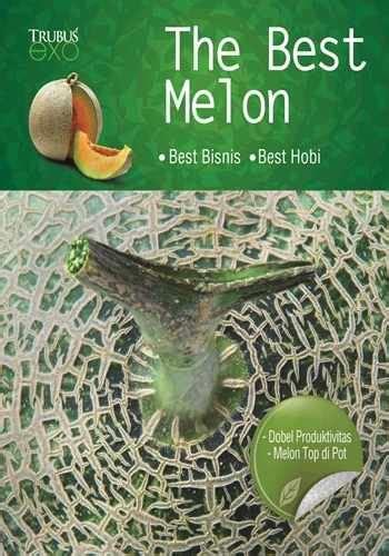 buku exo quot the best melon quot toko buku buku laris