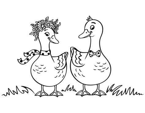 dibujos para colorear de patos dibujo de pareja de patos para colorear dibujos net
