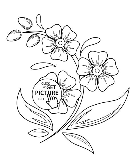 printable flower pictures to color beautiful flowers flowers coloring pages for kids printable free