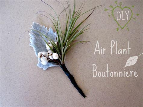 diy weddingbee diy air plant boutonniere weddingbee