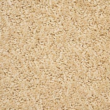 Phenix Flooring by Phenix Sure Soft Carpet Reviews Carpet Vidalondon