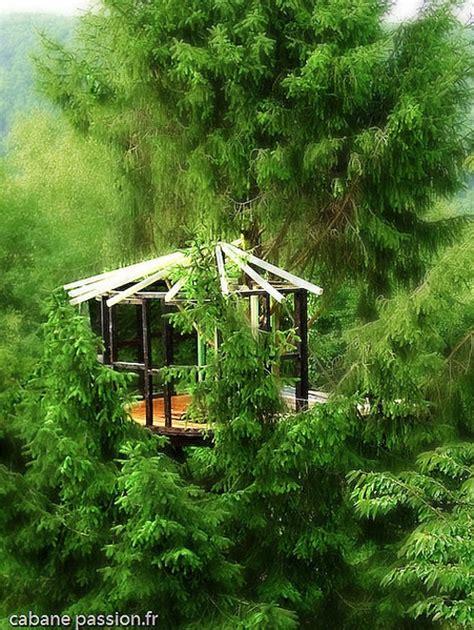tree houses around the world like a child 10 treehouses around the world