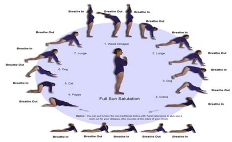 google images yoga poses beginners yoga poses google search exercises yoga