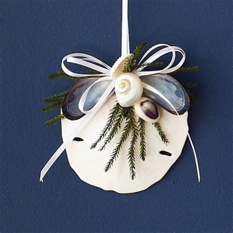 sand dollar craft projects 28 best images about sand dollar projects on