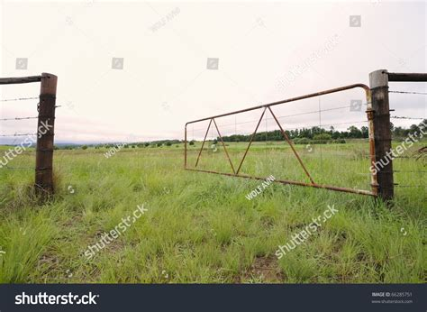 gates swing open old iron farm gate swings open stock photo 66285751
