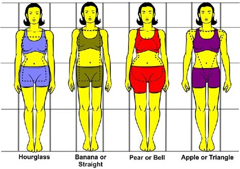 body types and shapes your body type dress tips for the 4 most prominent body