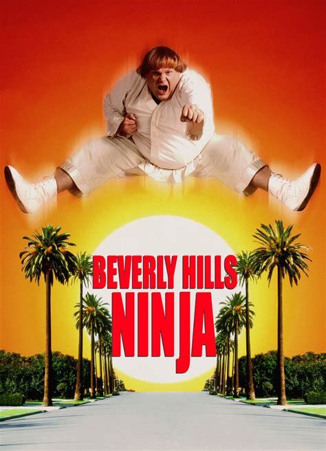film ninja in beverly hills beverly hills ninja movie reviews and movie ratings