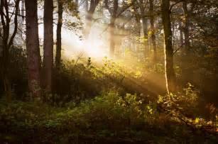 always find the light even when you re in the darkest