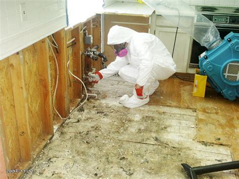 mold remediation vancouver restorations