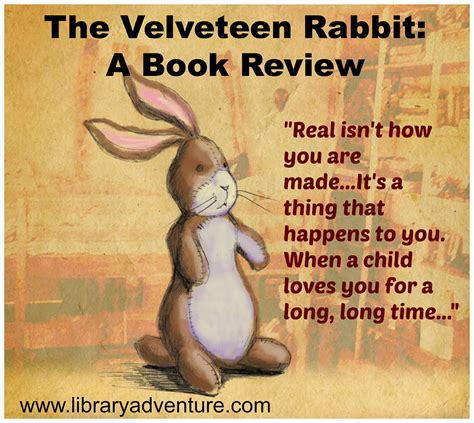 the rabbits picture book analysis the velveteen rabbit a review
