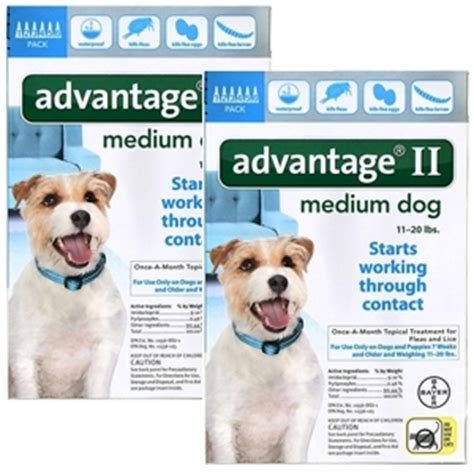 advantage for dogs 11 20 lbs 12 pack advantage ii for dogs 11 20 lbs 12 month teal supply vetdepot