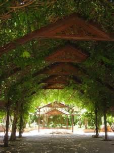 albuquerque nm botanical garden arbor garden arbors