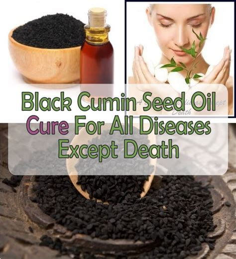 a cure for all disease except death baldness and hair loss black cumin seed oil health and beauty makeup