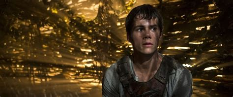 Film Maze Runner Review | the maze runner 2014 moviefone movies movie times party