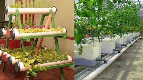 small space vertical vegetable gardens ideas unique