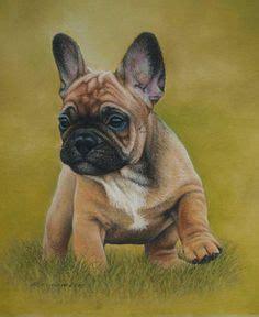 tattoo parlour howick vektor sketch hunde fransk bulldog racen vektor