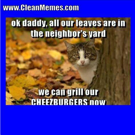 Meme Clean - cat memes clean memes the best the most online page 2