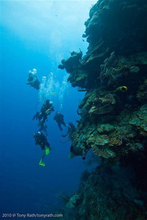 dive certification best 25 diving lessons ideas on scuba diving