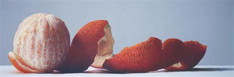acrylic painting hyperrealism ian bodnaryk