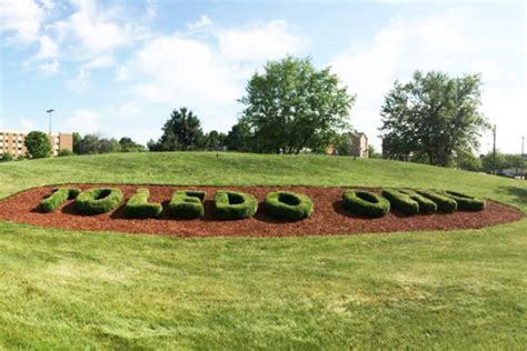 pro edge lawn care toledo landscaping company hardscapes