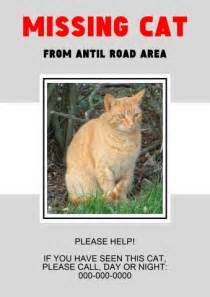 lost pet template missing pet poster template how to create a missing pet