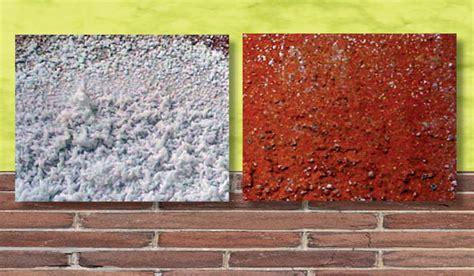 come togliere muffa dai muri interni come eliminare il salnitro dai muri in pietra semplice e