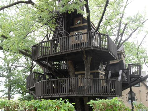 Best Treehouse | world s best treehouse by mihawk fan on deviantart
