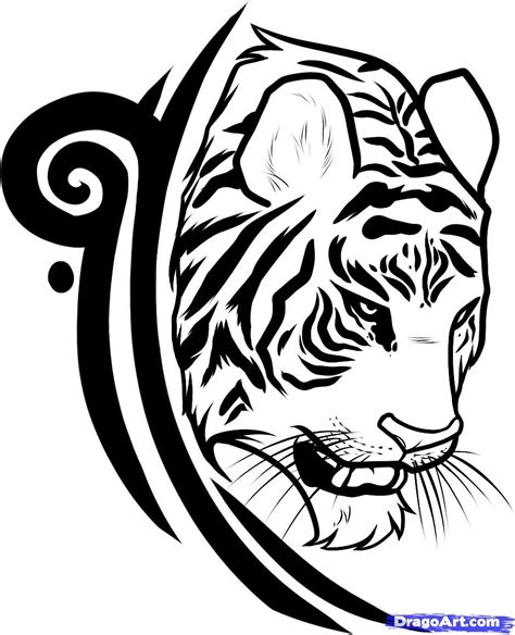 trace tattoo design tribal tiger designs draw a tiger design