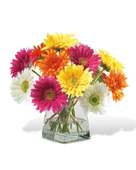 Ideas For Gerbera Flowers Decorate Happy With Gerbera Silk Flower Centerpiece At Officescapesdirect
