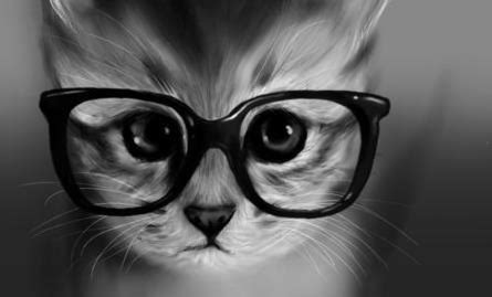 Cat With Glasses Black cat with glasses search by whi
