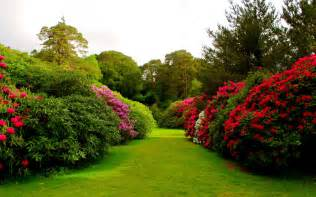 Flowers Garden Pictures Flower Garden Wallpapers Hd Wallpapers Beautiful Flowers Gardens Beautiful