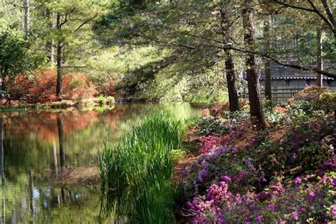 17 best images about callaway gardens on pinterest