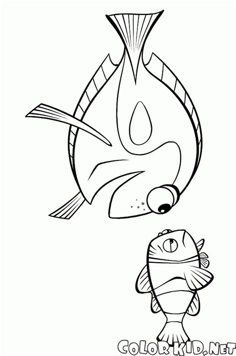 nemo jellyfish coloring pages coloring page dori and jellyfish