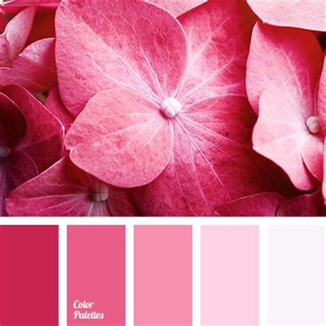 light pink color palette light pink tag color palette ideas