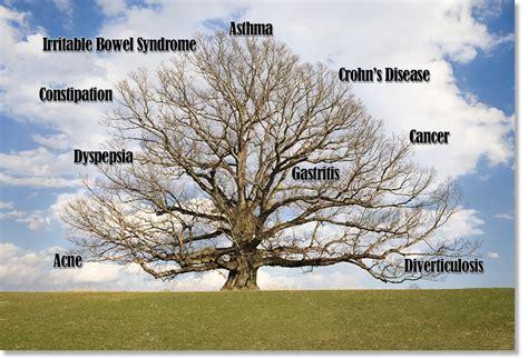 north london colonic irrigation the disease symptom tree