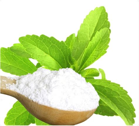 Plante De Stevia by Is Stevia Safe