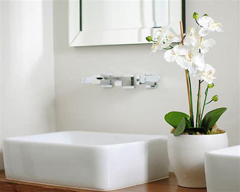 plants to keep in bathroom purify your bathroom with plants goflatpacks