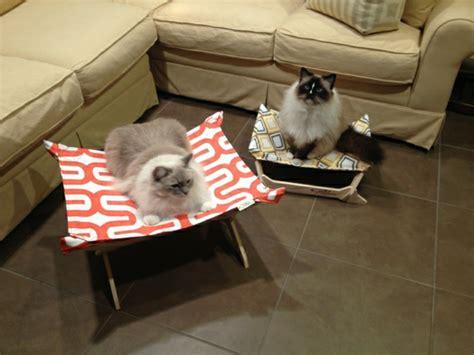 garten ideen für katzen design relaxliegen wohnzimmer