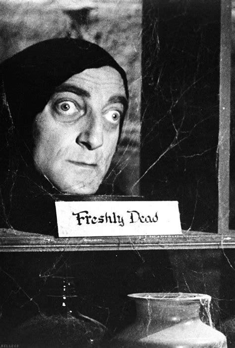 quotes from frankenstein fascinating best 25 frankenstein abby normal young frankenstein quotes quotesgram