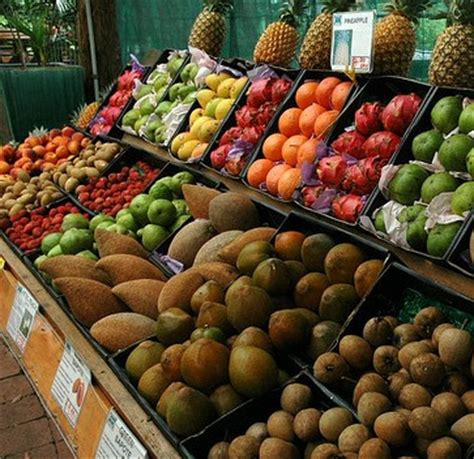 fruit unhealthy is fruit unhealthy for with type 2 diabetes