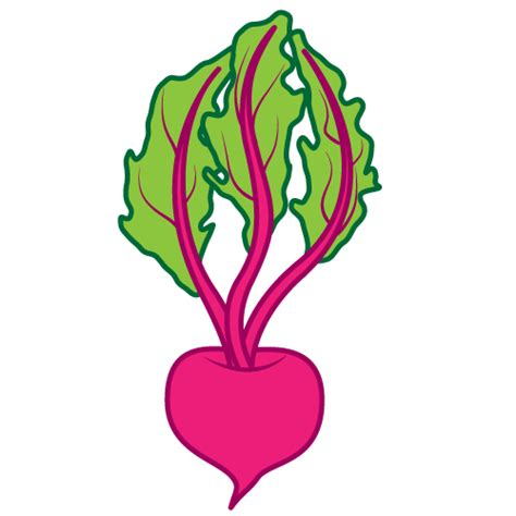 beet clipart beetroot clipart clipground