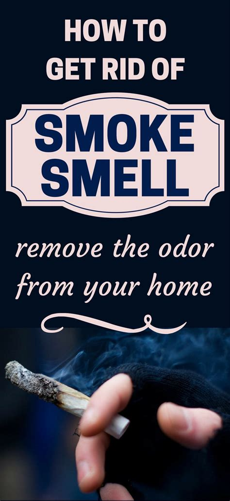 how to smoke in bathroom without smell 1047 best house cleaning images on pinterest cleaning